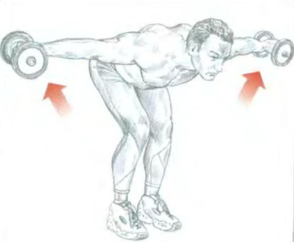 Упражнения для искривления осанки