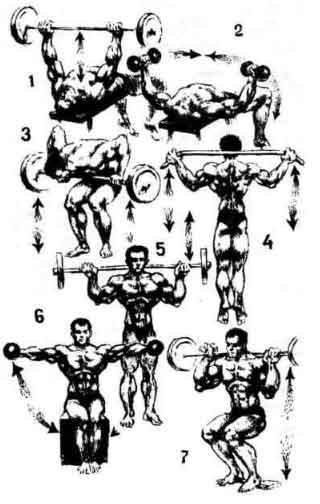 Комплекс упражнений для зала