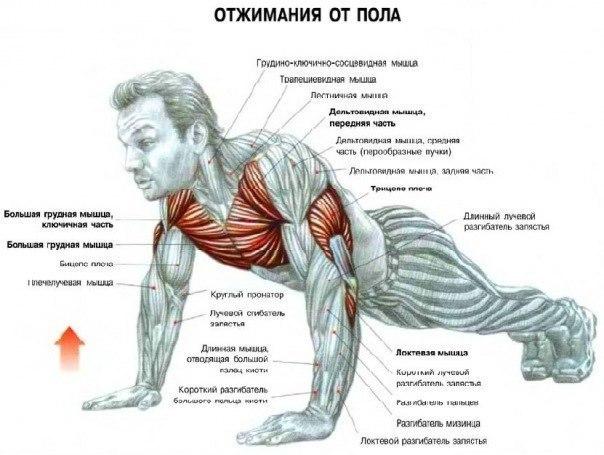 Различные упражнения на